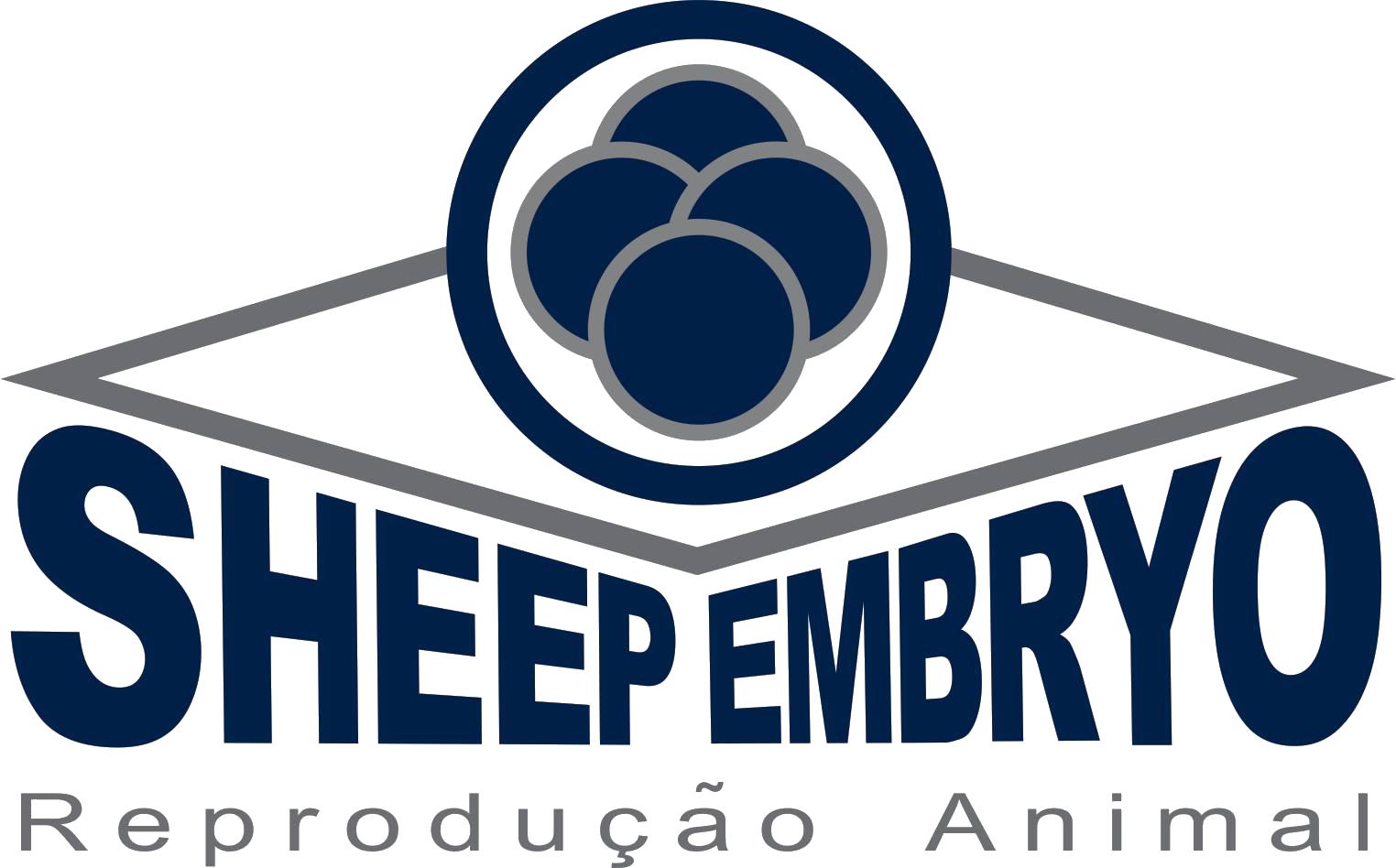 Sheep Embryo –  Cursos de Reprodução Animal